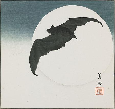 la chauve-souris et la lune