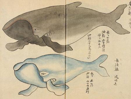 estampe japonaise de baleine