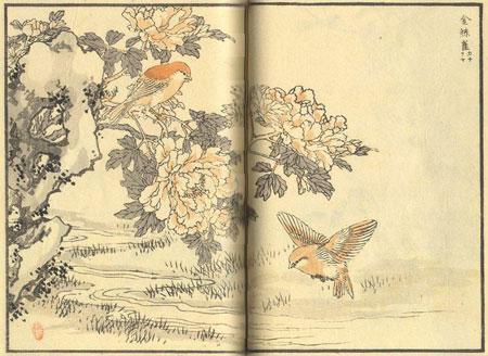 estampe d'oiseaux