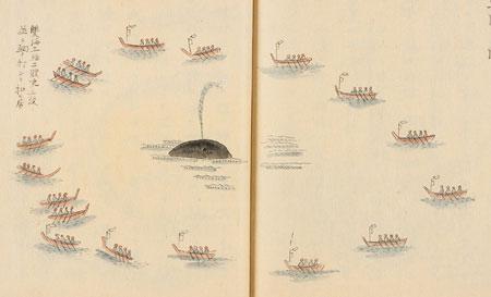 encerclement d'une baleine